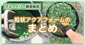 【ブルーベリー養液(水耕)栽培】粒状アクアフォームまとめ
