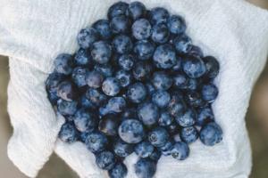 ブルーベリーは美味しいだけではなく栄養満点!