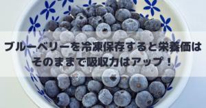 ブルーベリーを冷凍保存すると栄養価はそのままで吸収力はアップ!